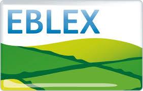 EBLEX 3